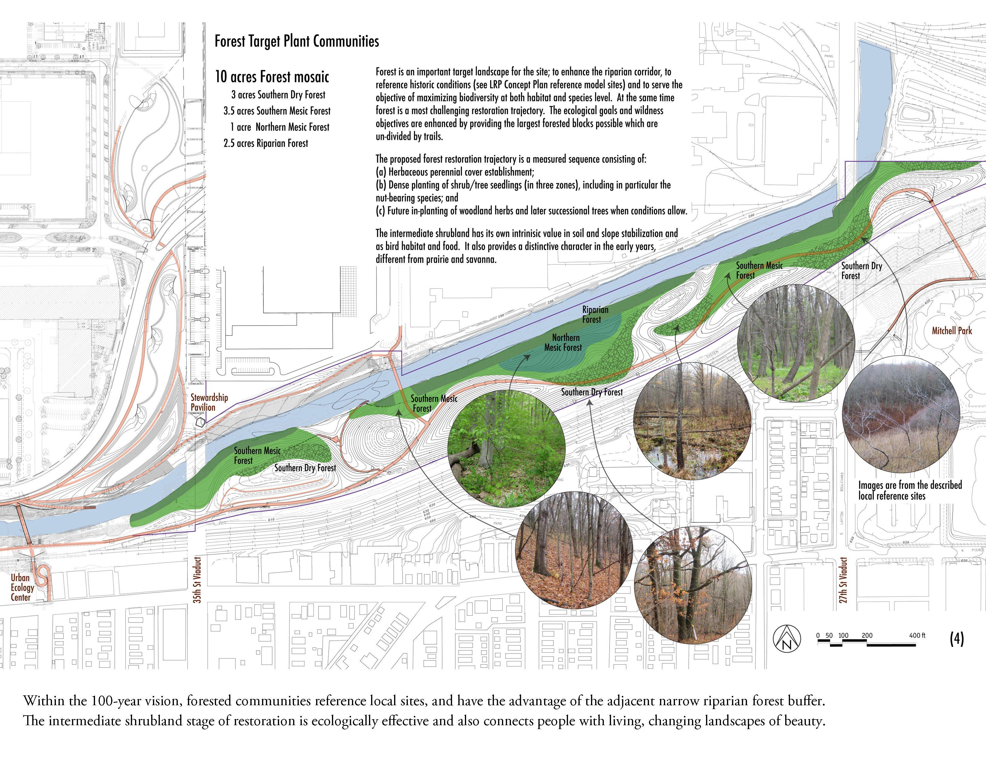 """Landscape Architecture Drawing Techniques forest """"landscape architecture"""" - google search   franklin park"""