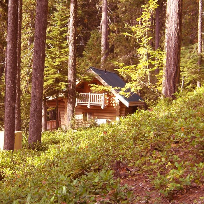 Mt. Rainier cabin. Mt. Rainier Cabin rentals. Mt. Rainier lodging. - Alta Crystal Resort