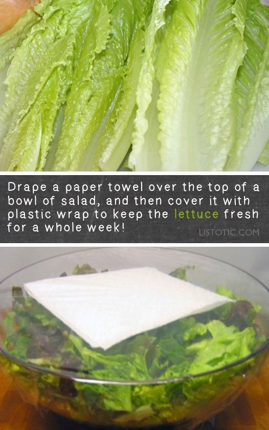 Photo of How to keep lettuce fresh in the fridge for longer! Lots of kitchen and food tip…