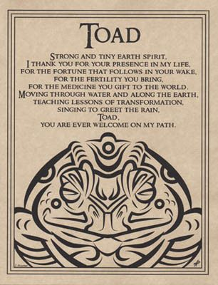 TOAD BLESSING POSTER A4 SIZE Wicca Pagan Witch Witchcraft