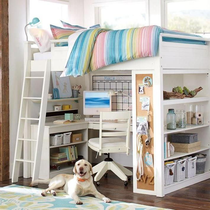 Incredible Loft Bed Design With Striped Blanket Also Study Table