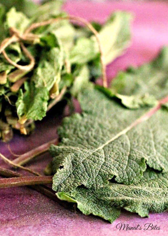 ورق اللسان الأخضر Edible Plants Plants Arabic Food