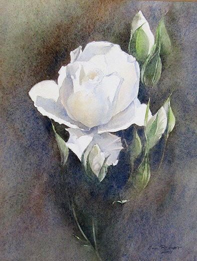 Aquarelle De Anne Peyrat France Flower Art Flower Painting