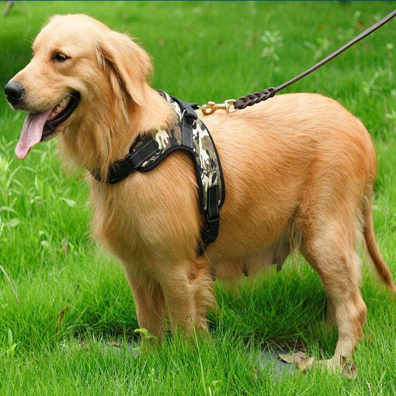 Find More Dog Vests Information About Adjustable Dog Vest Pet Dog
