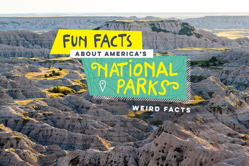 U s national park fun facts weird facts unusual facts