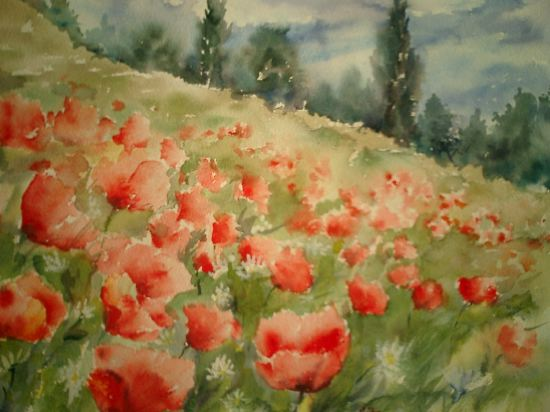Coquelicots (1) « Petra Wauters