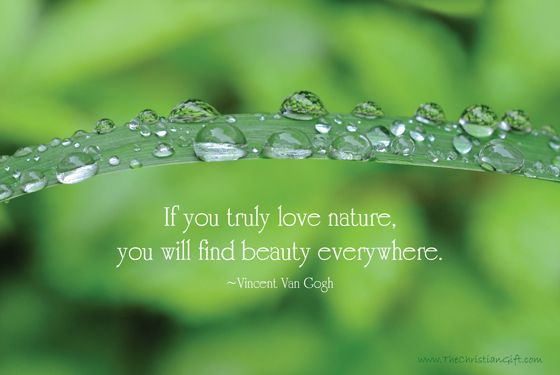 Quotes About Beauty After Rain Google Search Love Nature