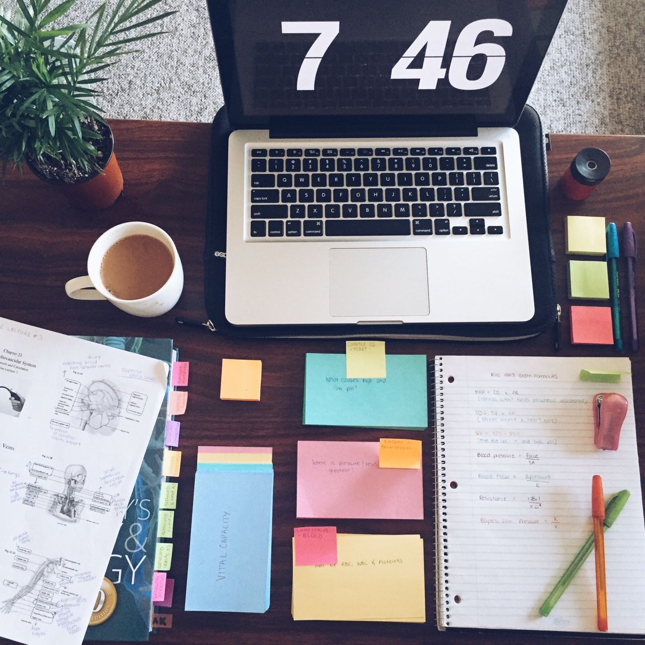 10 Lists To Clear Your Mind Right Now Anatomy Workout And Studyblr