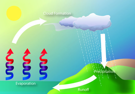 Evaporation Model Kids Google Search Water Cycle Pinterest