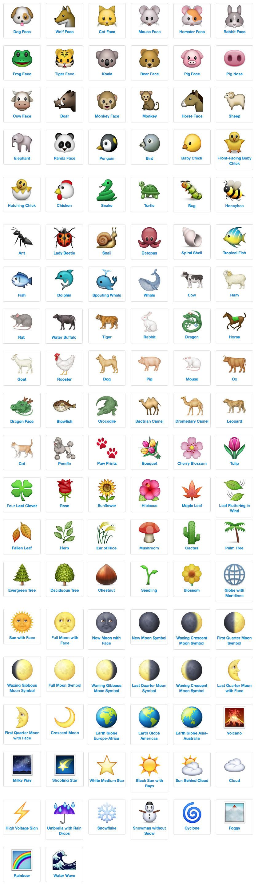 emoji icon list nature and animals with meanings and