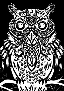 Coloriage Adulte Fond Noir.Coloriage Hibou Fond Noir Coloriages Pour Adultes Owl Artwork