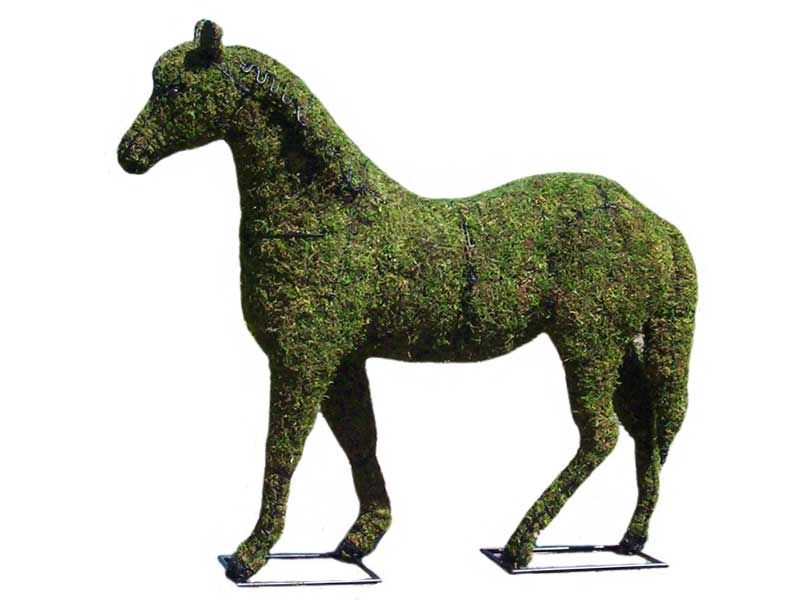 Exceptional How To Make Topiary Animals Part - 4: How To Make A Topiary Animal | Live Topiary Plants | Guide