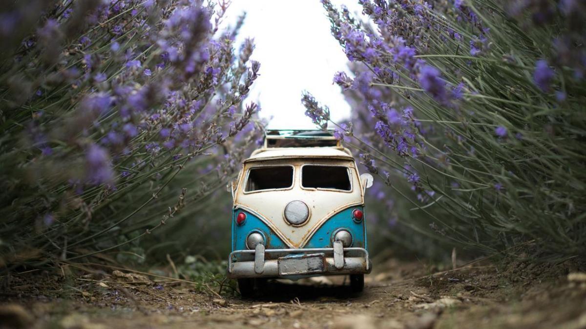 Carros En Miniatura Sumamente Adorables Fotografiados En Lugares
