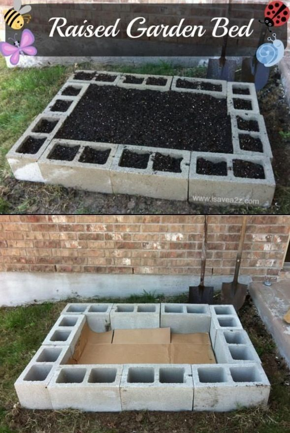 Cinder block raised vegetable beds. Easy and inexpensive. Won't rot or draw insects like wood either.