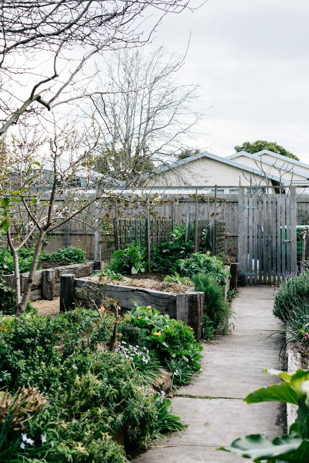 ben shaw permaculture and edible garden design geelong on wow awesome backyard patio designs ideas for copy id=50293