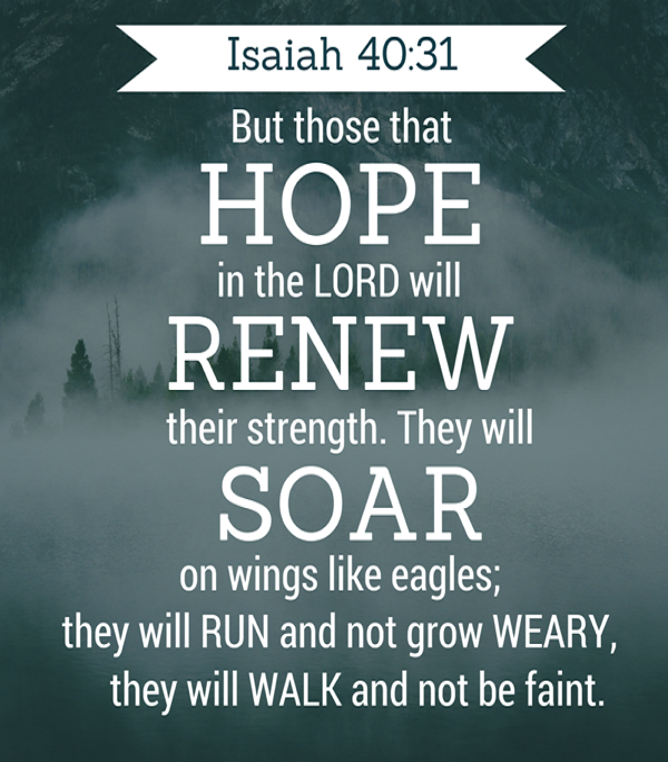 isaiah 40 31 niv but those who hope in the lord will renew their