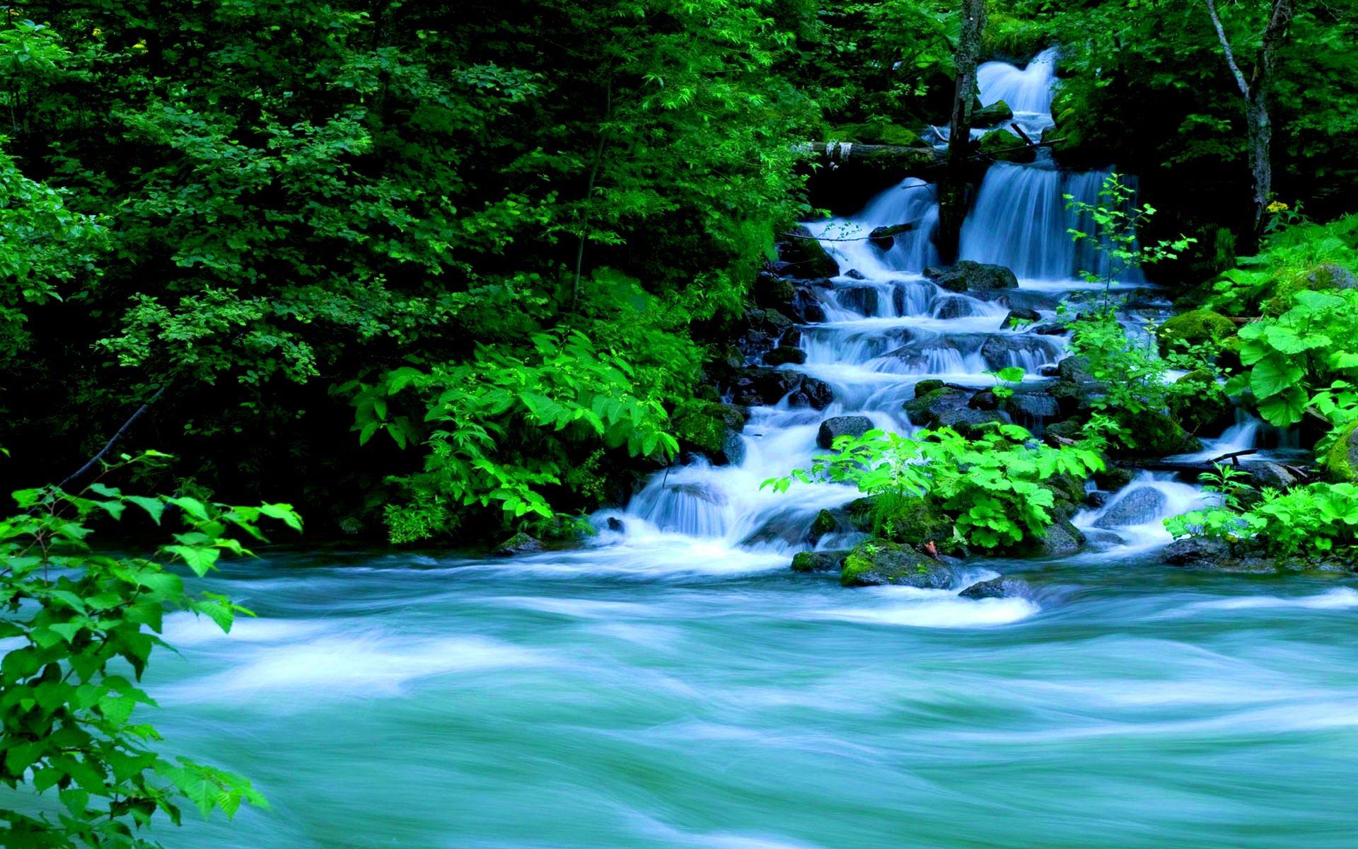Forest Waterfalls 1497063 Waterfall Wallpaper Forest Waterfall Waterfall