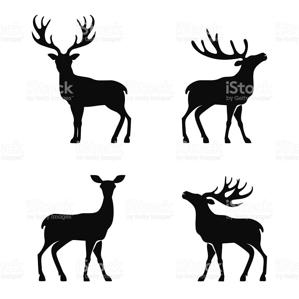 Vector Illustration Of Collection Of Deers Silhouette Deer Silhouette Painting Deer Silhouette Deer Illustration
