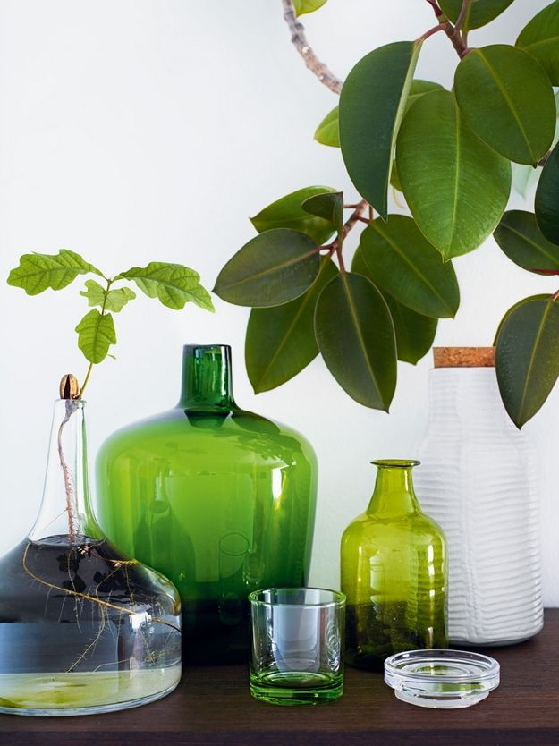 Groene planten groen glaswerk | Groen interieur | Pinterest | Meine ...
