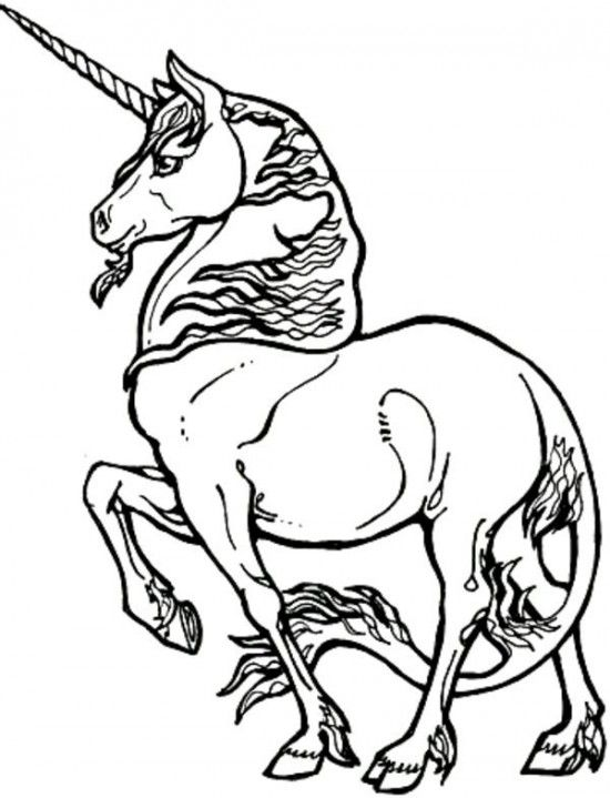 Cool Collection Realistic Unicorn Coloring Pages For Kids All About Free Coloring Pages For Kids Unicorn Coloring Pages Horse Coloring Pages Coloring Books