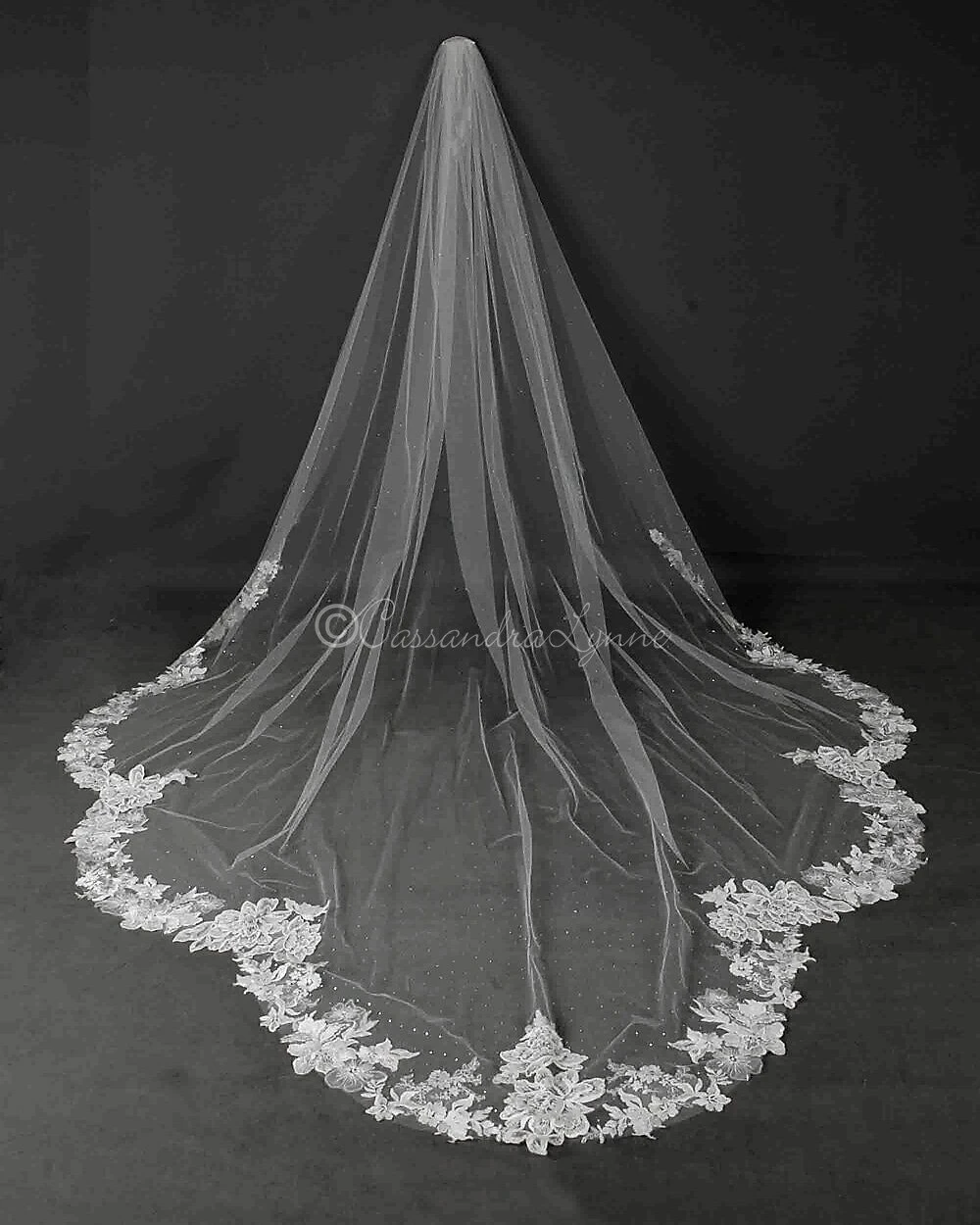 Dramatic Scallop Royal Length Lace Bridal Veil In 2020 Simple Wedding Veil Lace Veils Bridal Flower Crown Wedding Veil