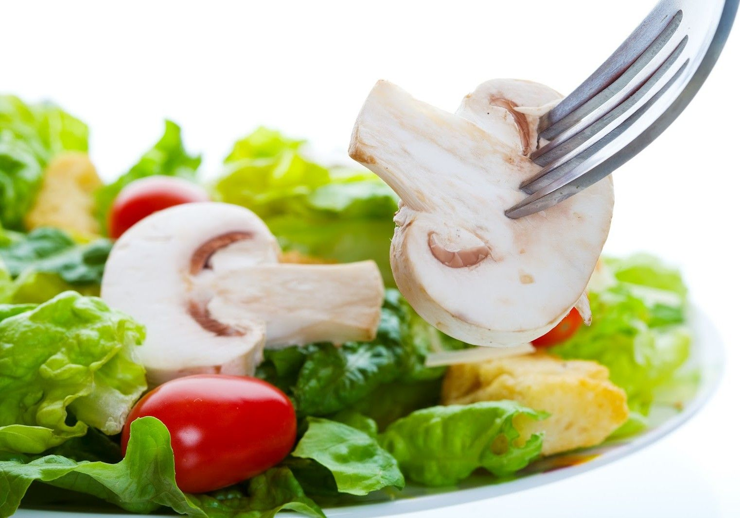 Garcinia Magic Diet Reviews