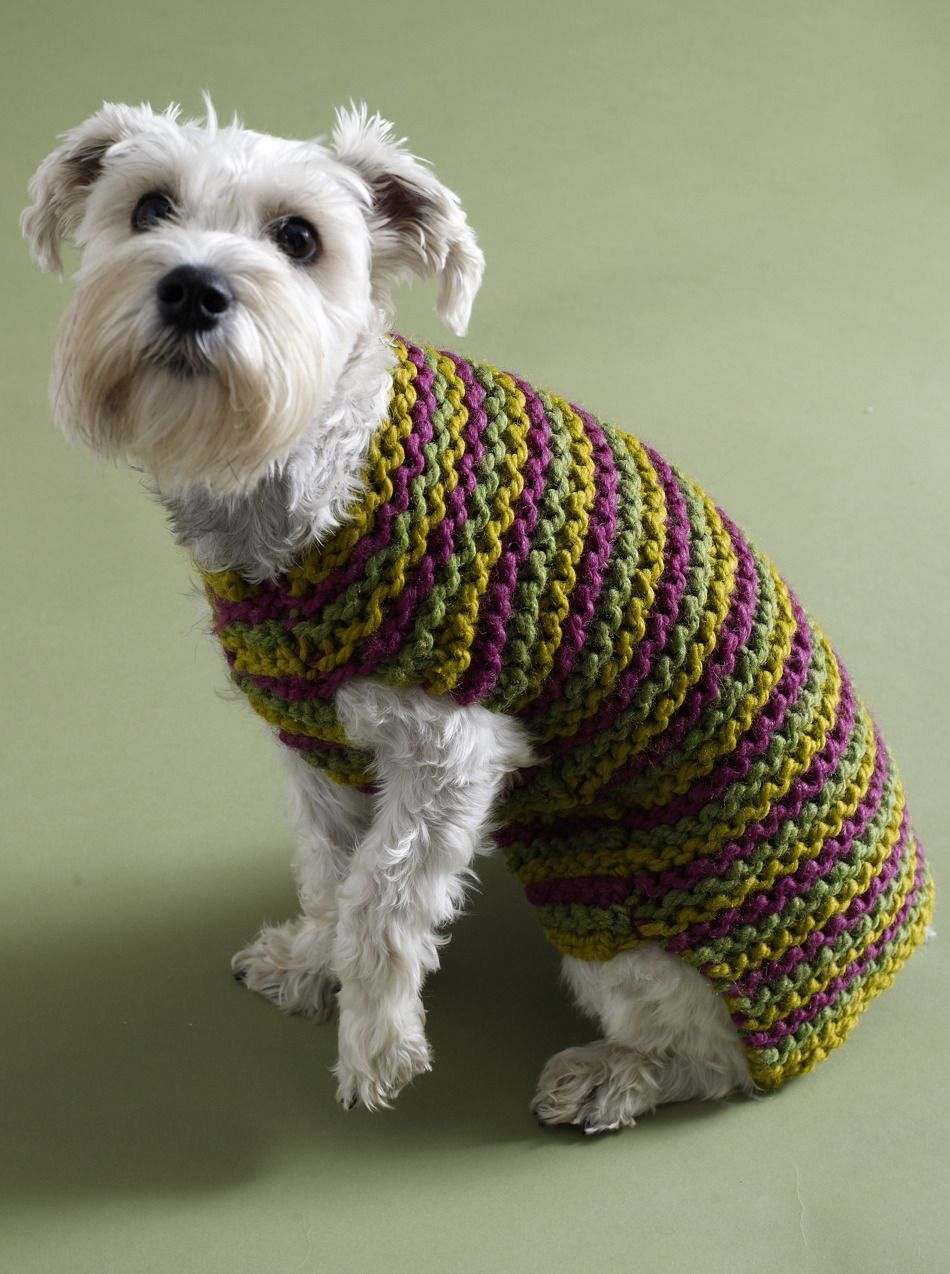 Top 5 Free Dog Sweater Knitting Patterns | Patrones para suéter y Rayas