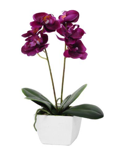 Artificial Orchid Potted Deep Pink Fuschia Silk Flower Plant in White Wooden Pot 33cm tall