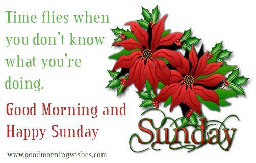 Good Morning And Happy Sunday Text : Sunday good morning happy