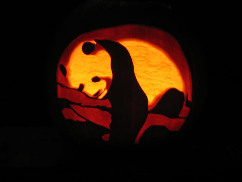 a panda pumpkin soooo awesome halloween fall pumpkin rh pinterest com