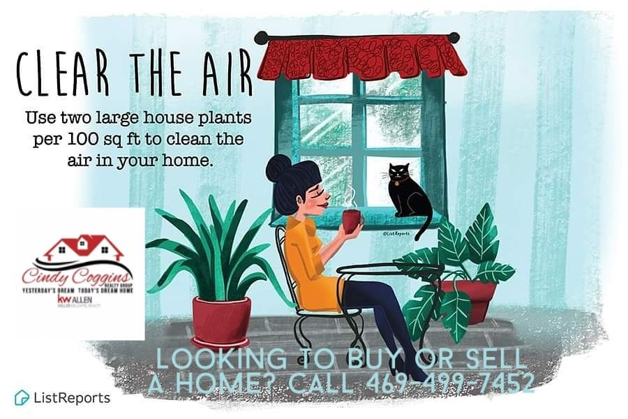 Clear the air with plants Did you know plants clean the air Three goodsized plants will work wonders for an average living room Looking to buy or sell a home Call 4694997...