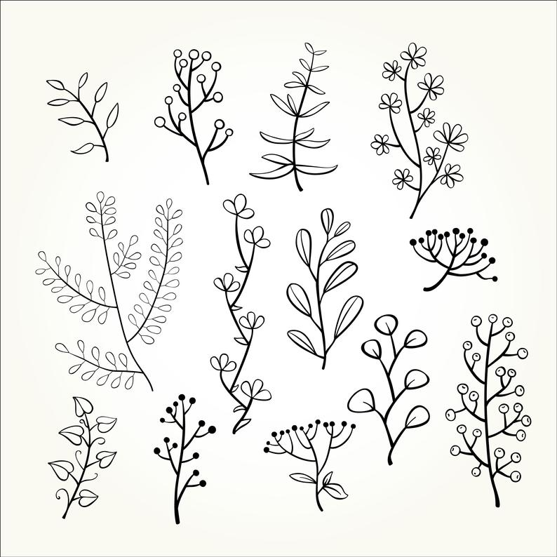 Set Of 50 Doodle Botanical Elements Png Doodle Floral Clipart Svg Doodle Floral Hand Drawn Botanical Clipart Botanical Doodle Set In 2021 Doodle Art Flowers Small Flower Drawings Vine Drawing