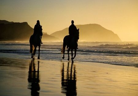 Horse Riding Beach