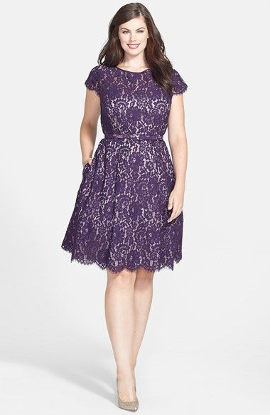 Eliza J Belted Lace Fit & Flare Dress (Plus Size) | Nordstrom