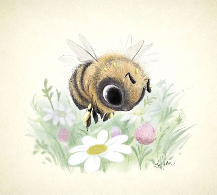 les très mignonnes illustrations danimaux de sydney dessein