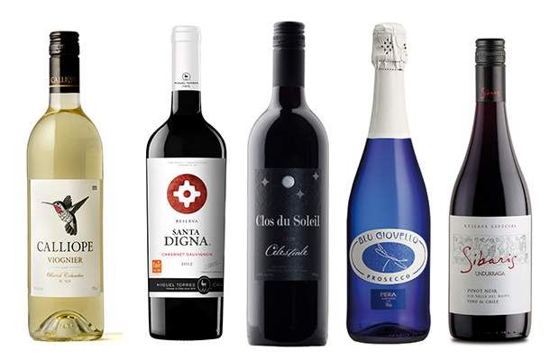 Left to right: Calliope 2013 Viognier from B.C.; Miguel Torres, Santa Digna 2010 Cabernet Sauvignon from Chile; Clos du Soleil 2012 Celestiale from B.C.; Blu Giovello Prosecco from Italy; Undurraga 2012 Sibaris Reserva Pinot Noir from Chile
