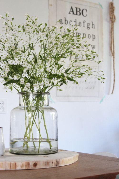 gipskruid Blumen Pinterest Frühling, Blumen und Schöner wohnen