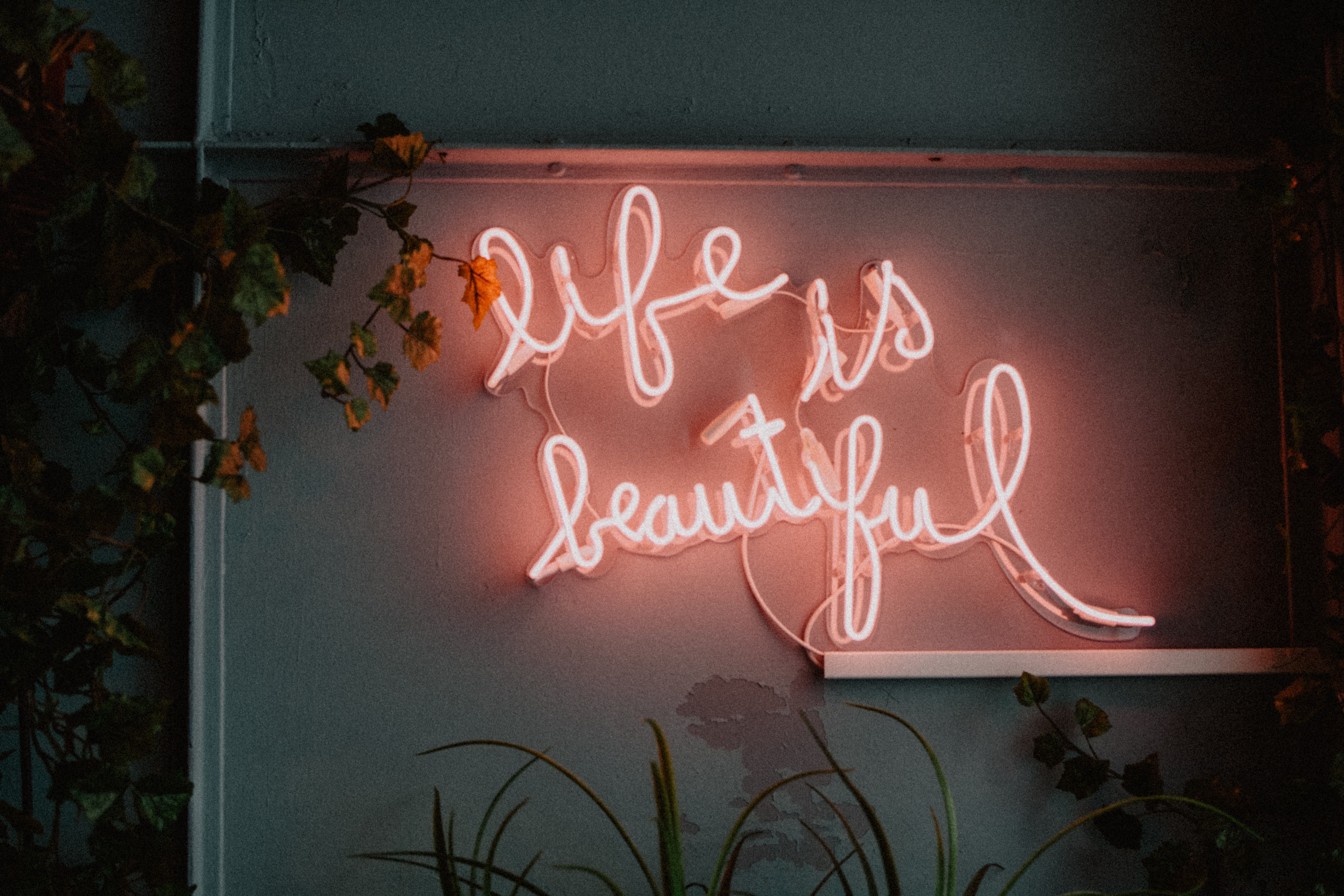 Awesome Wallpaper God Quotes For Girls Photos Neon Quotes Led Signage Neon Signs