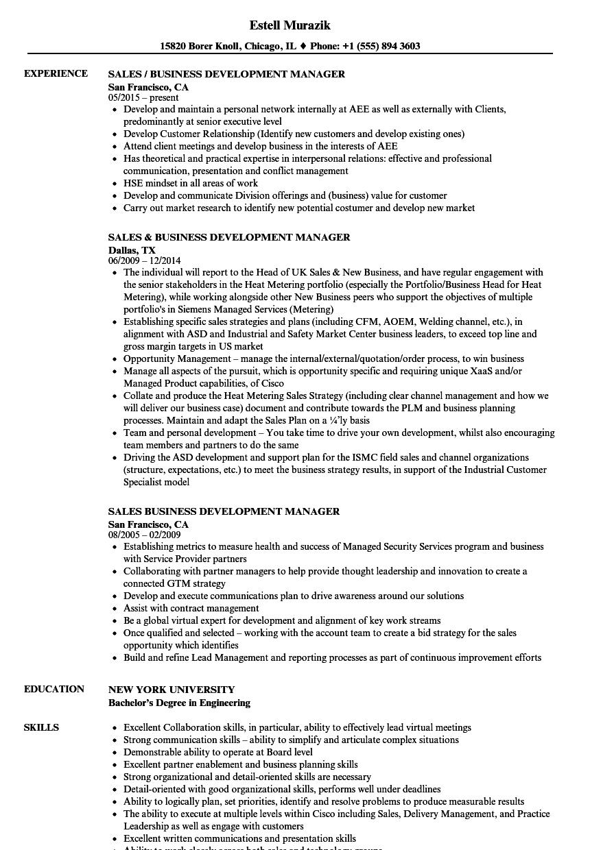 Business Intelligence Resume Sample Unique Sales Business Development Manager Resume Samples Resume Manager Resume Job Resume Examples