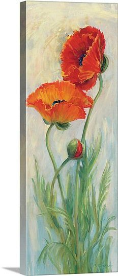 Rembrandt Poppies In 2020 Watercolor Poppies Art Prints Art