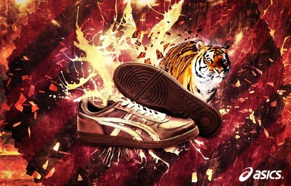 asics graphic design - Google Search | Asics, Ad campaign, Sneakers