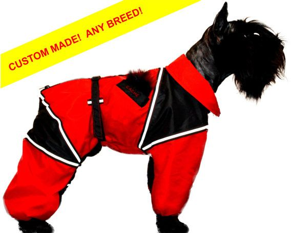 latest double coupon durable modeling CUSTOM FIT! Custom Dog Raincoat Full Body Large Breed Dog ...