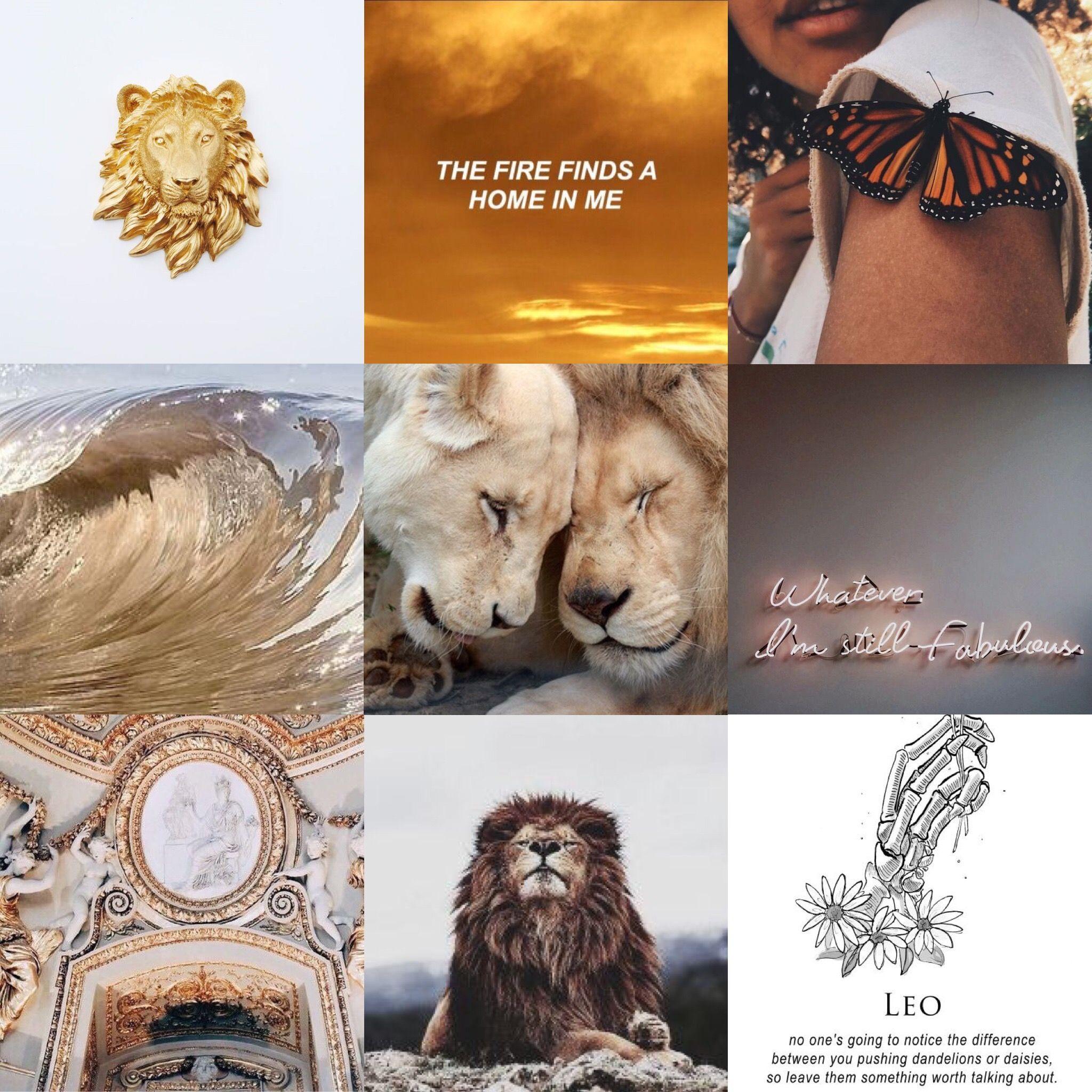 Aesthetic leo zodiac wallpaper