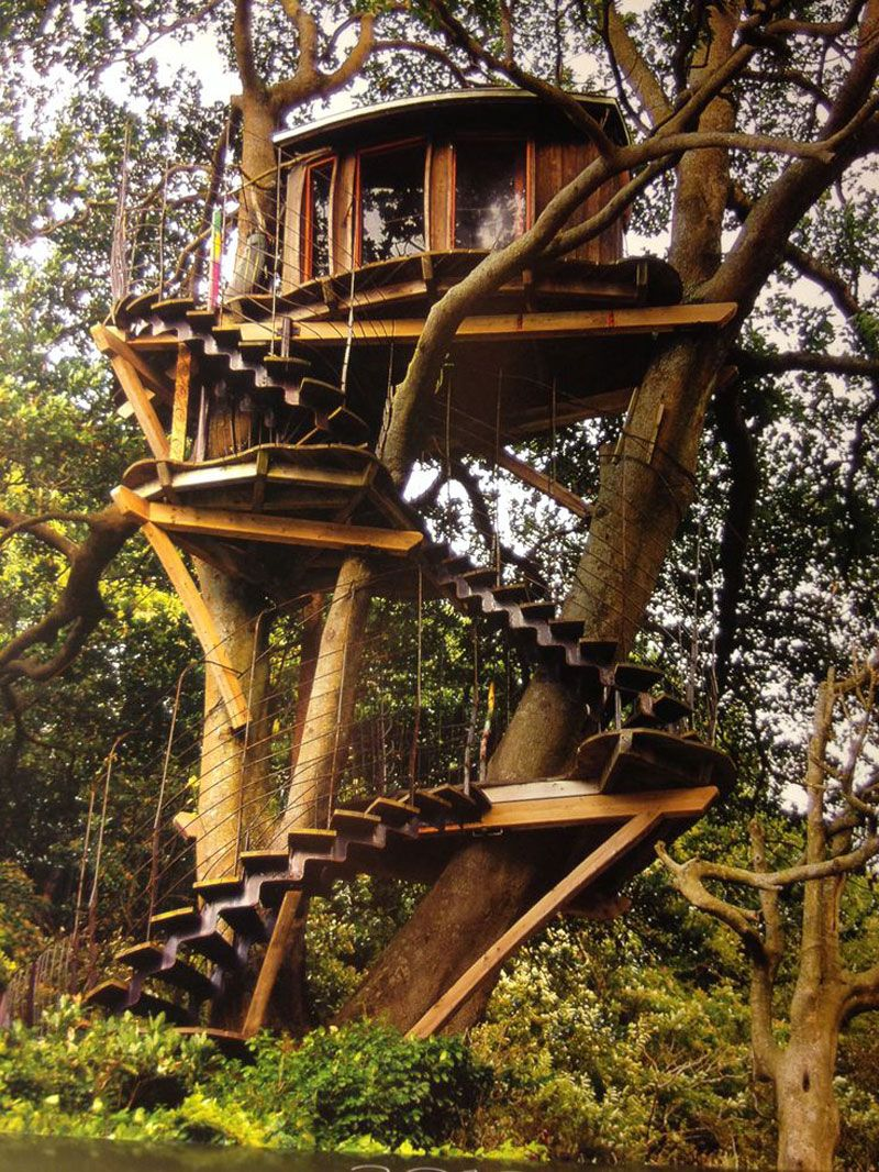 Architecture. Startling Wooden Tree House Featuring