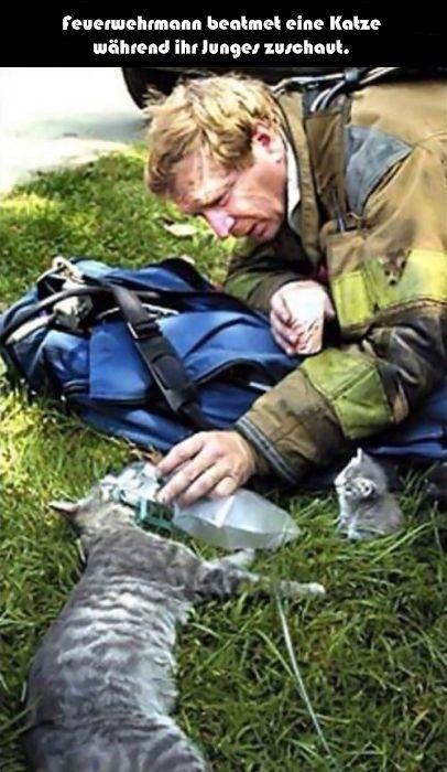 Jedes Leben zählt #animalrescue