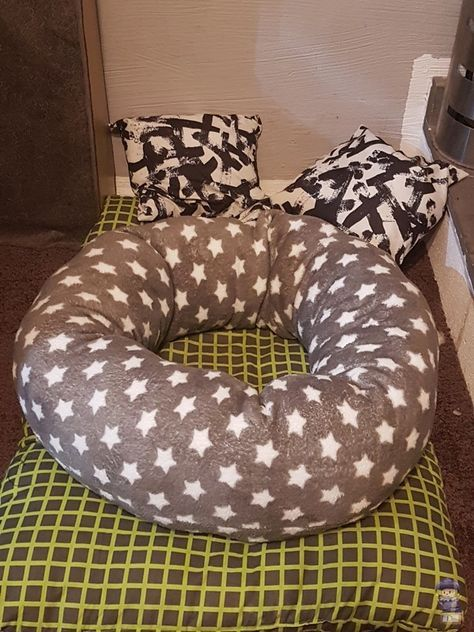 Photo of How to sew a cuddly donut for your pet!