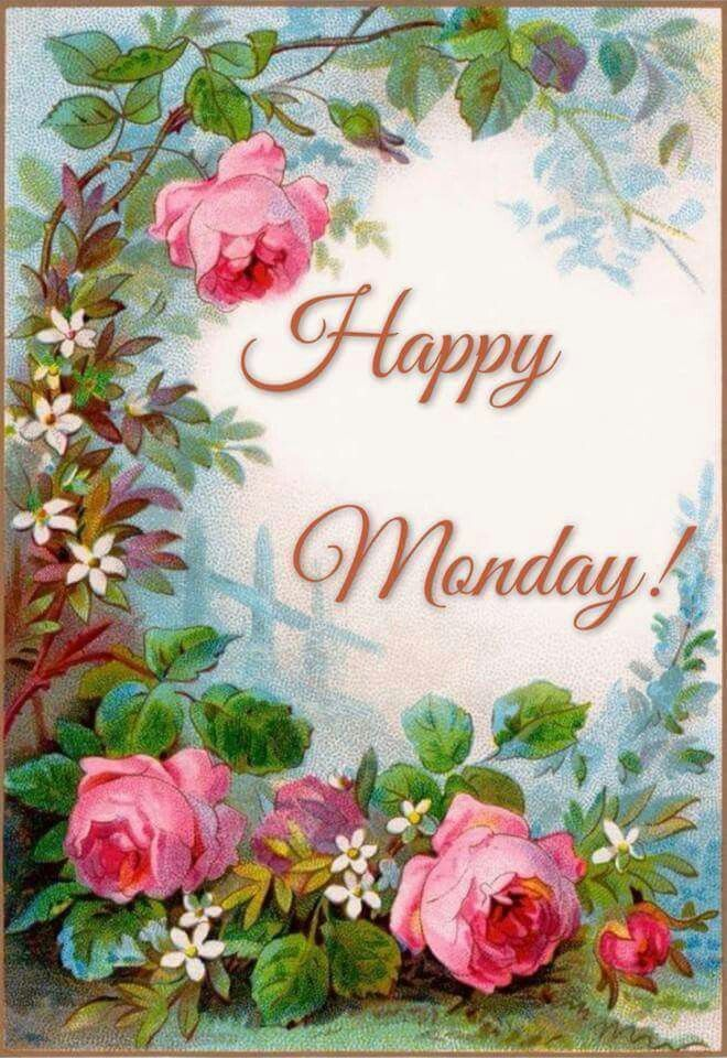 Happy monday bless monday pinterest happy anniversary happy monday m4hsunfo
