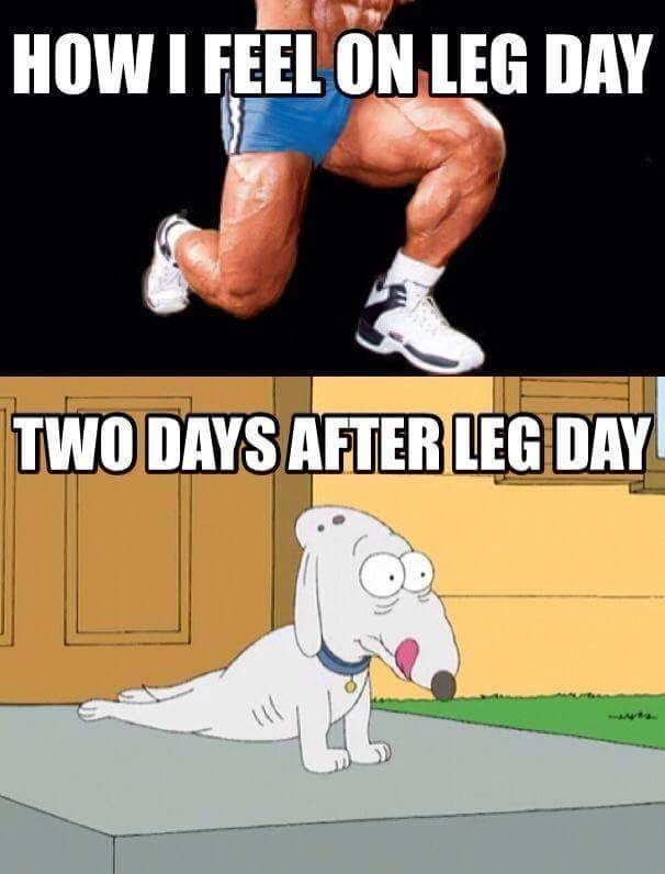 Leg Day For Me Was Tuesday Workout Humor Workout Memes Leg Day Humor