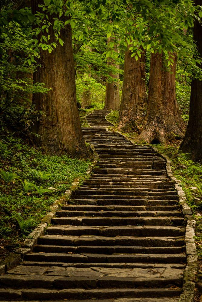 Photograph Stairway to heaven by Eric   on 500px