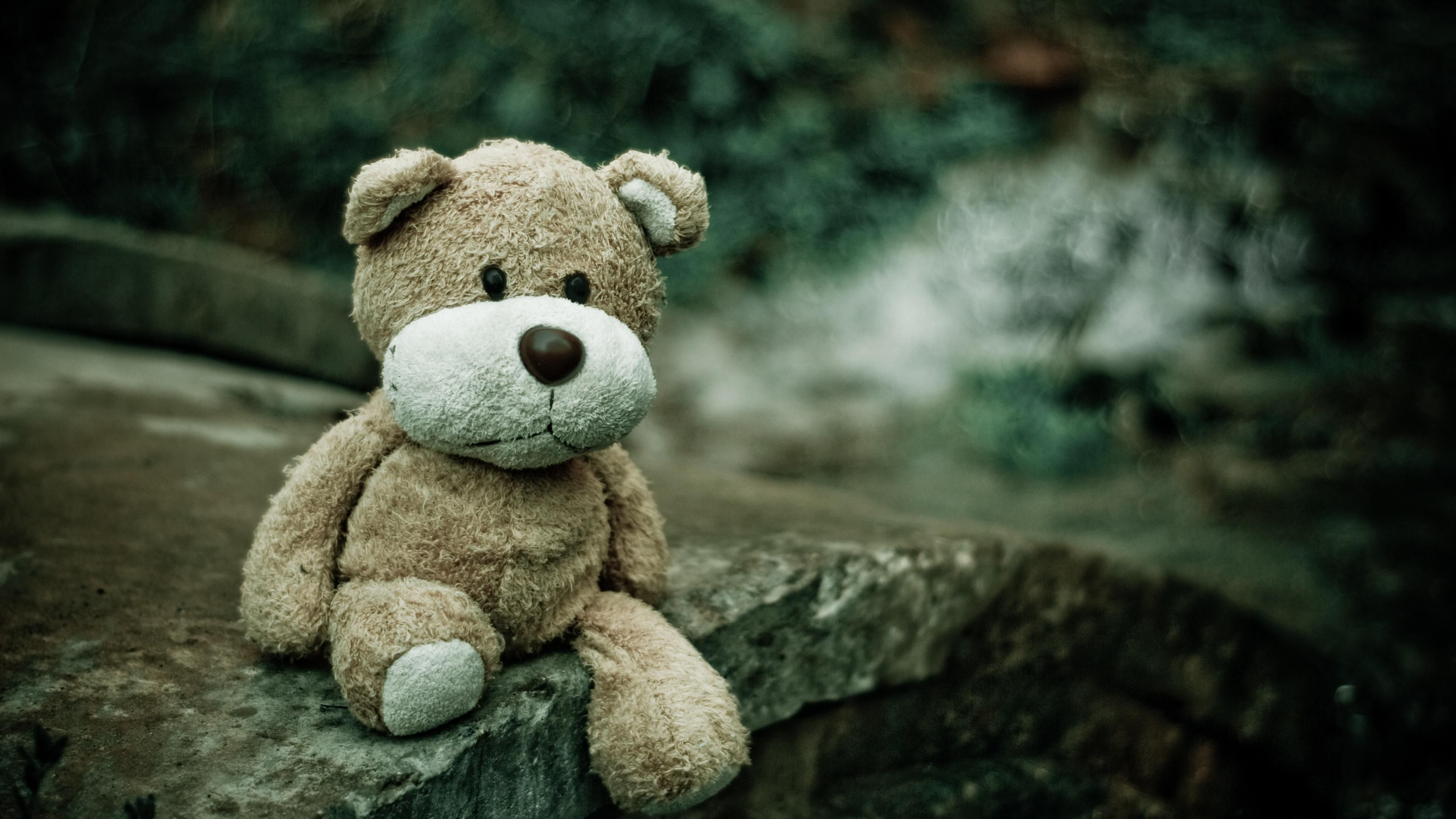 Sad Teddy Bear Hd Wallpaper 473617 Ffd Teddy Bear Bear Teddy